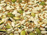 ciri-ciri-benih-tanaman