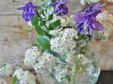 merawat-bunga-potong
